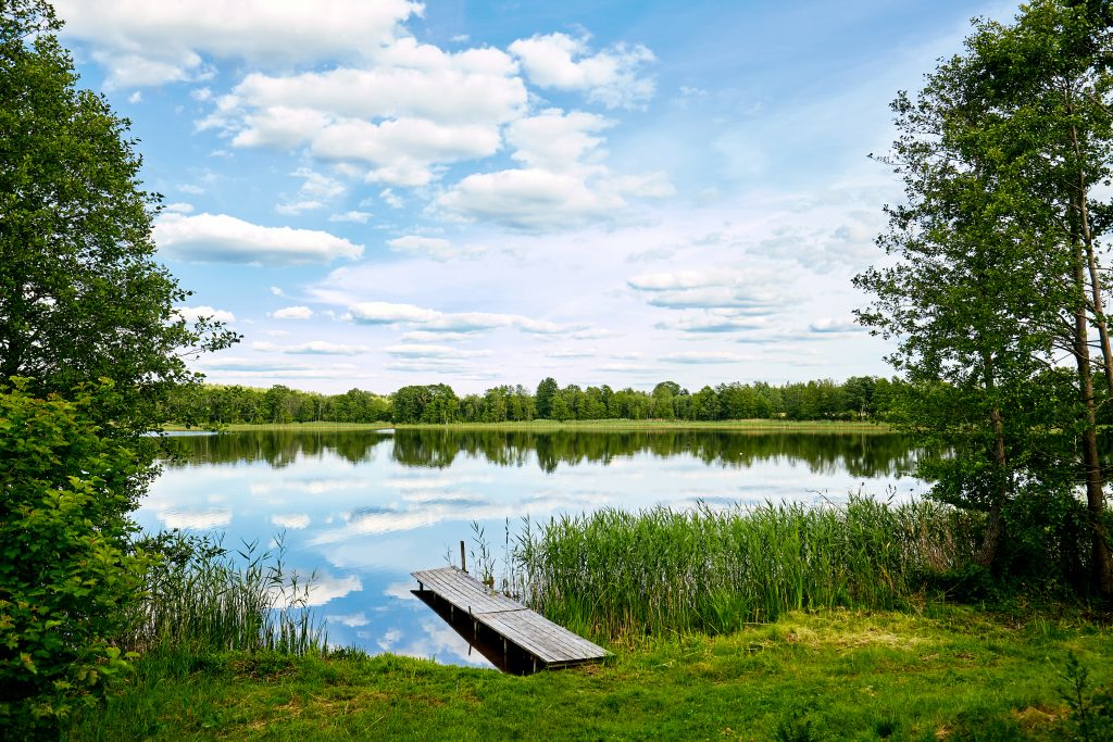 How to Purify Lake Water for Drinking