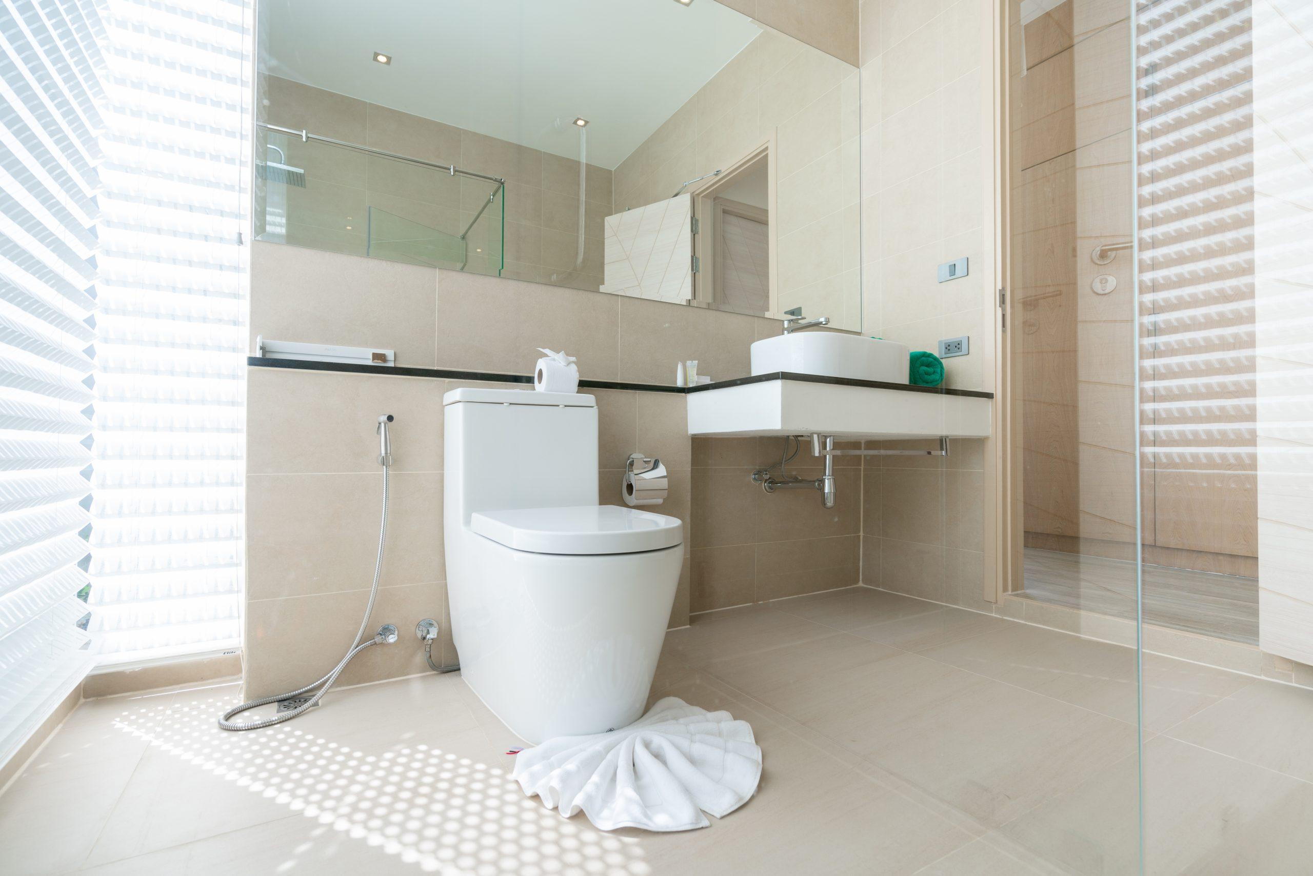 Best Toilet for Flushing Large Poop
