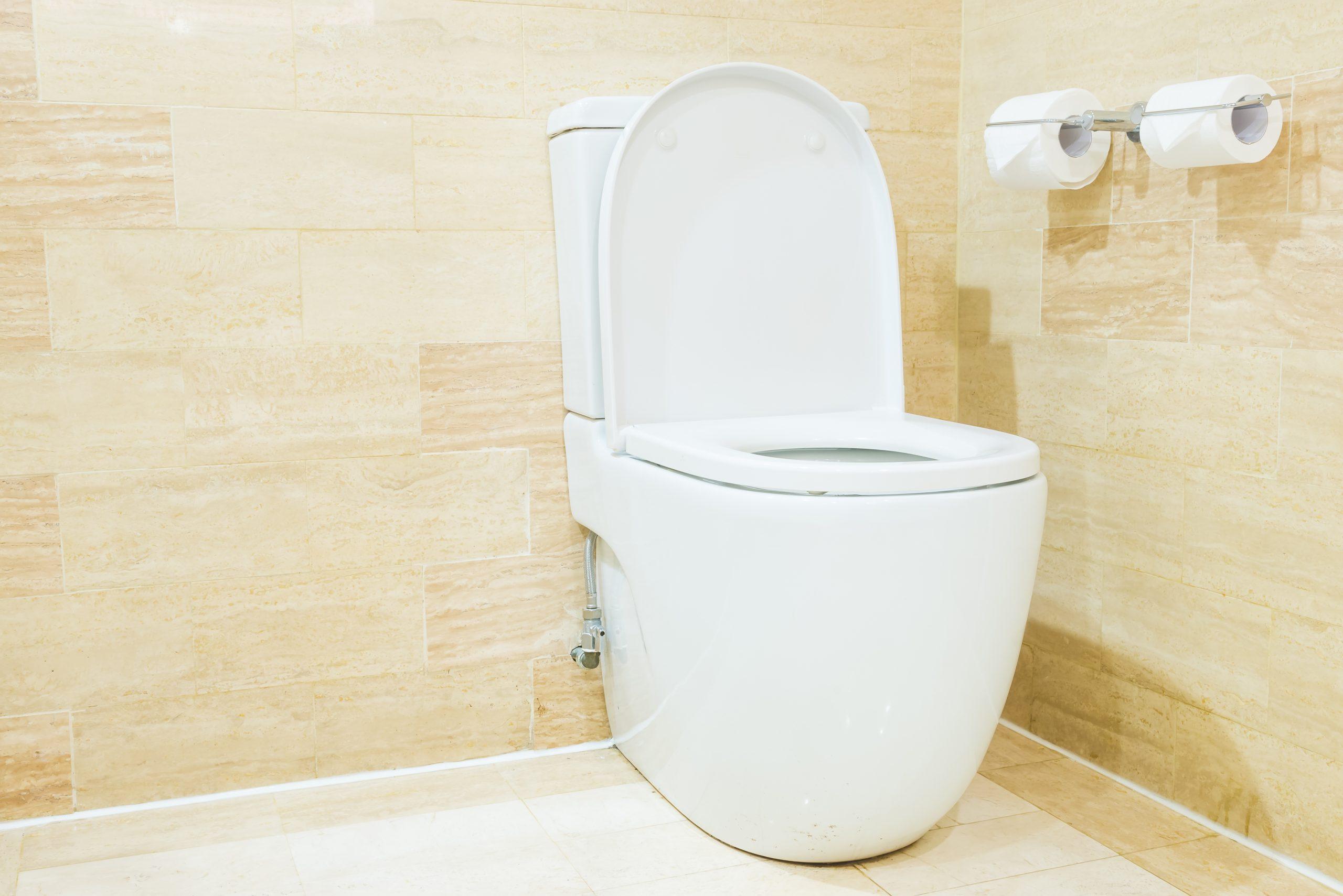 Best Toilet for Large Bowel Movements
